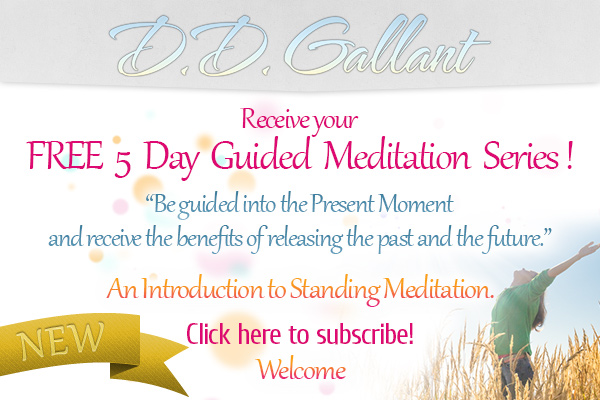 dd 5 day meditation series new